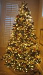 Christmas Tree 5 by GreenEyezz-stock