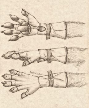 Anthro Paw Glove Design by RussellTuller