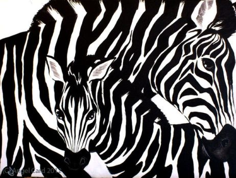 Zebras by ButterflyInDisguise