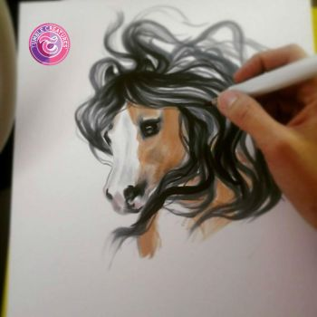 Buckskin marker sketch by crystalcookart