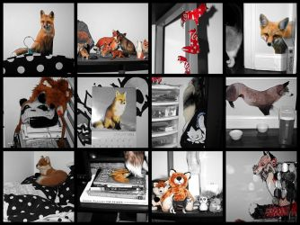 Fox Mania by foxluver1