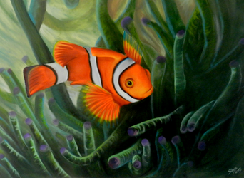 Clownfish - Oil on canvas by saystark