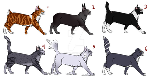cat adopts - OPEN [1/6] by dunbull