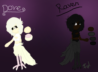 Raven and Dove by 13thefreerunner