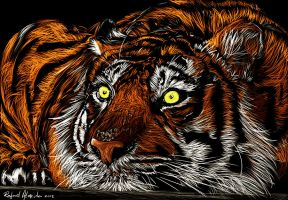 Tiger by ryster17