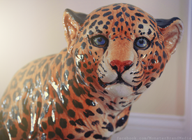 Leopard by MonsterBrand