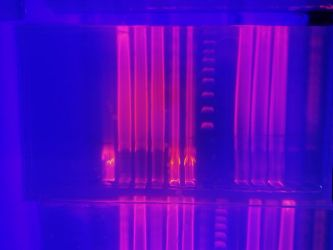 DNA and UV by Roselillas