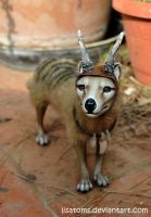 Thylacine with accessories by LisaToms