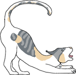 Silverspots For Selkie by JabbyTheWhale