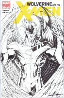 Archangel vs Angel sketchcover by adelsocorona
