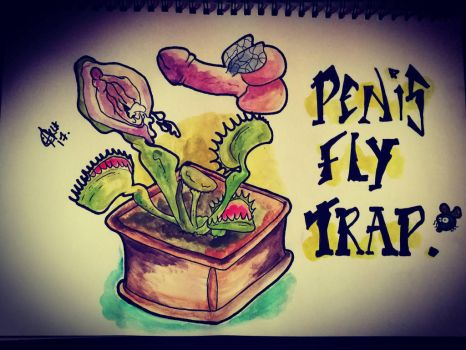 fly trap by norler