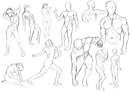 Anatomy Practice - Day 1 by Nixri