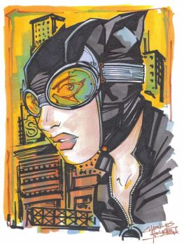 Marker : Catwoman by KidNotorious