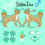 York Reference Sheet by Official-Fallblossom