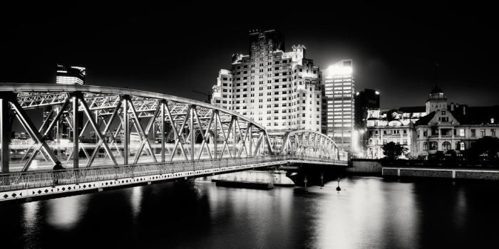 Shanghai bridge by xMEGALOPOLISx
