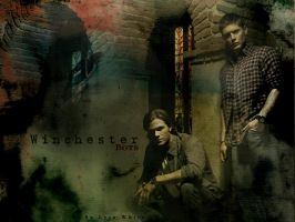 Winchesters by LyraWhite