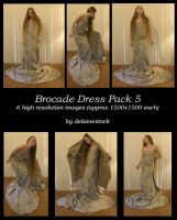 Brocade Dress Pack 5 by delainestock