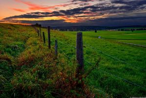 Green fields and a sunset by JoInnovate