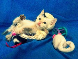 Playtime. by Catist