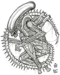 the xenomorph by ayillustrations