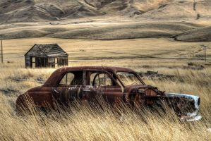 Wasting Away XIII by CMiner1