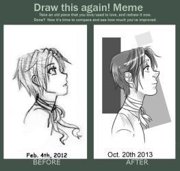 Draw This Again! Meme 7 by SollinFaolan