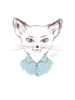 Kristofferson - Fantastic Mr. Fox by anarocipetri
