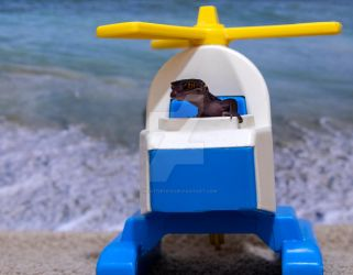 Sabbath - On Beach in Helicopter - 7179 by creative1978