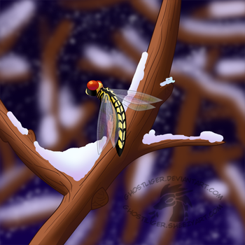 Winter Dragonfly by GhostLiger
