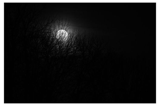 Eve of the Moon by OniPhotography
