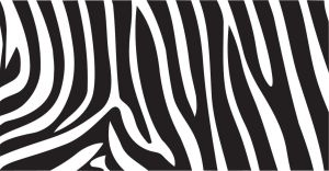 Zebra Print Vector by inferlogic