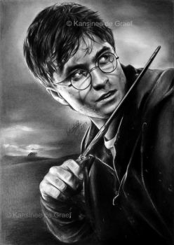 Harry Potter by kansineedegraefart