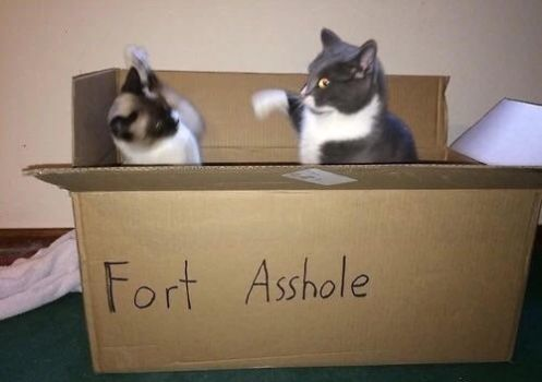 Fort Asshole by TheFunnyAmerican