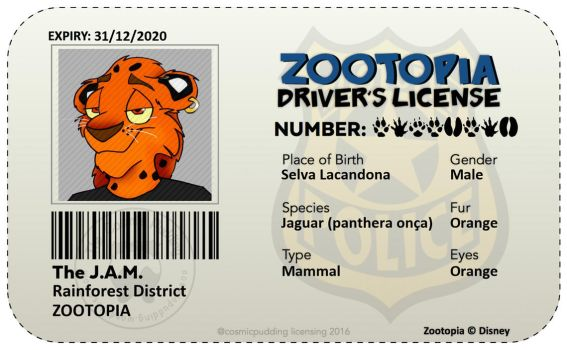 My Zootopia Driver's Licence!!! by iamthejam