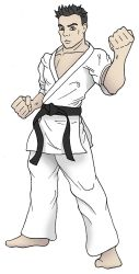 Kyokushin Black Belt by TheGreenCount