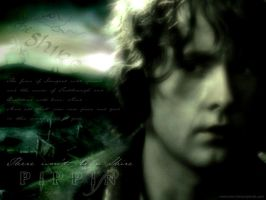 'There won't be a Shire' by Estella-Brandybuck