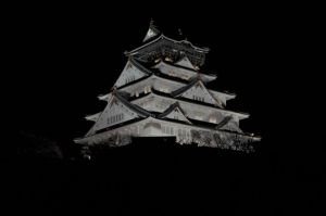 Osaka castle at night by Furuhashi335
