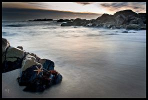 Relax on the Rock by nfp
