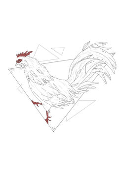 Rooster by volokine