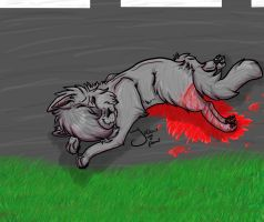 Cinderpaw's accident. Warrior Cats by jellowpaw