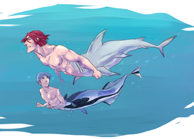 Shark and Remora by SplitSoulSister
