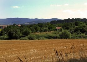 country by Wanderlouve