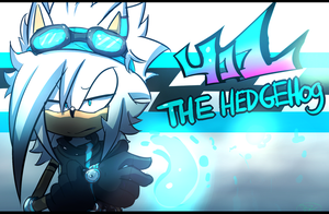 .:401 The Hedgehog:. ( re-Degin) by Omiza-Zu