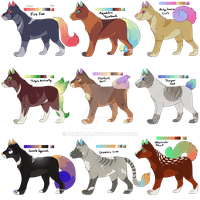 Colourful Canines SP - Points - CLOSED by PennyADayAdopts