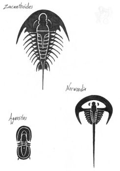 Tribal Trilobites 01 by R-Eventide