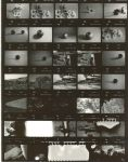Contact Print 2 by SuperSeniorPS1