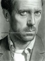 Hugh Laurie - House 2 by michellebrown