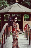 Geisha quits7 by TheEscapistInTokyo