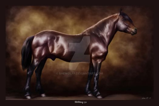 Equine Legacy: Hofding 170 by SheWolff