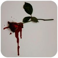 A dying rose... by Janina-Photography